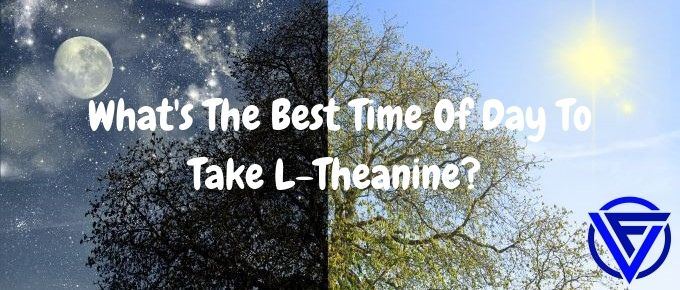 What's The Best Time Of Day To Take L-Theanine? (Morning or Evening)