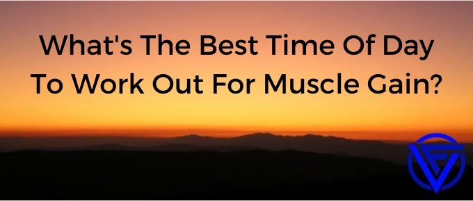 What's The Best Time Of Day To Workout For Muscle Gain? (Our Verdict)
