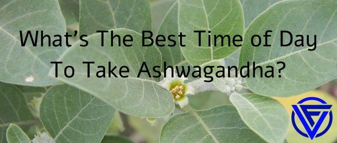 What's The Best Time of Day To Take Ashwagandha?