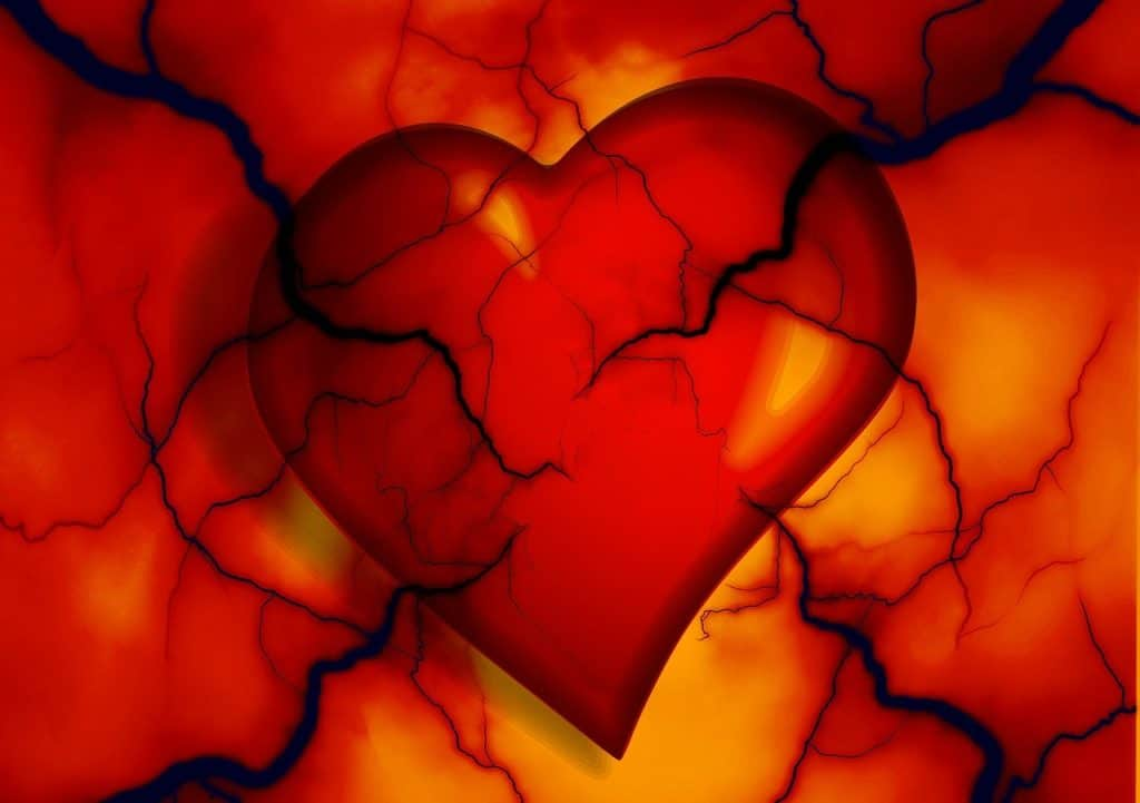 vegetable oil causes heart disease
