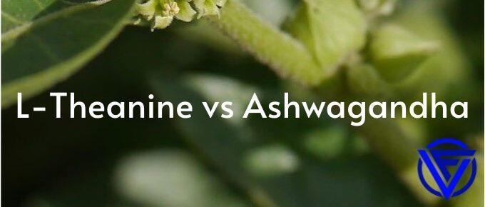 l theanine vs ashwagandha