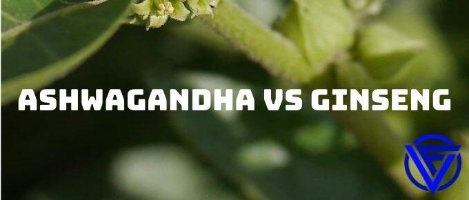 ashwagandha vs ginseng