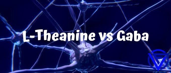 l theanine vs gaba