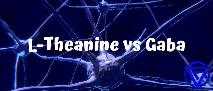 L-Theanine vs GABA – Which One Should You Take?