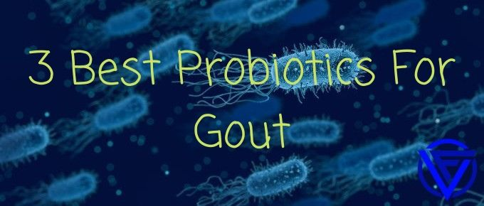 3 Best Probiotics For Gout (That Actually Work)