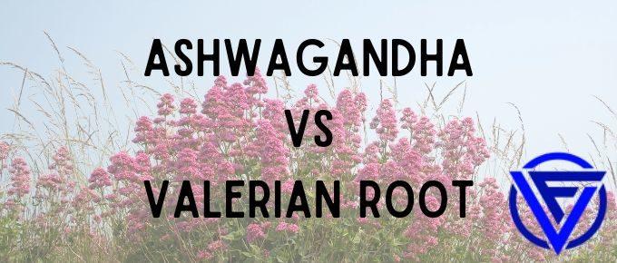 ashwagandha vs valerian root
