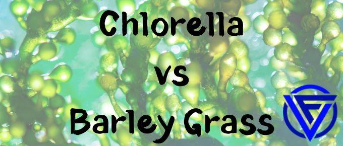 Chlorella vs Barley Grass – Which One Should You Take?