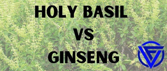 holy basil vs ginseng