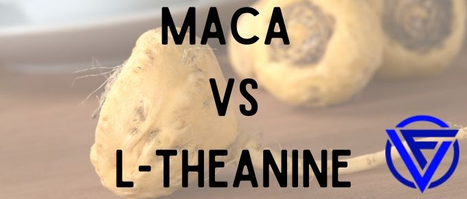 Maca vs L-Theanine – Which One Should You Take?