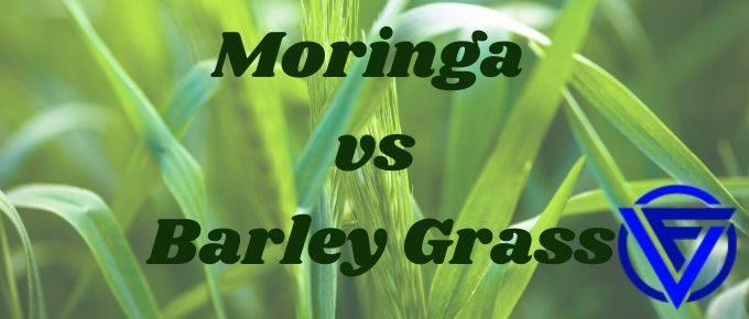 moringa vs barley grass