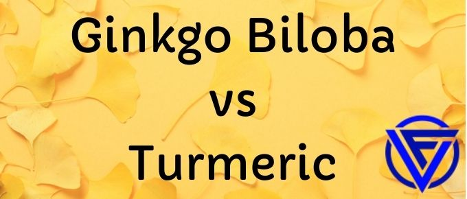 Ginkgo Biloba vs Turmeric – Which One Should You Take?